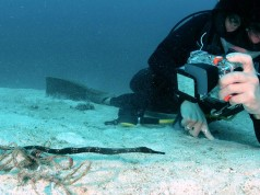 Waterdichte compactcamera Tips voor gebruik